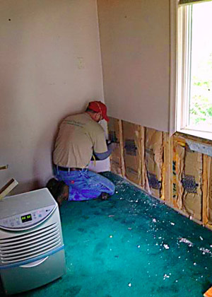We provide quality Mold Remediation services by Certified Mold Inspectors